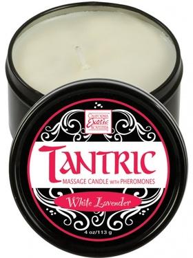 California Exotic - Tantric Massageljus - Vit Lavendel